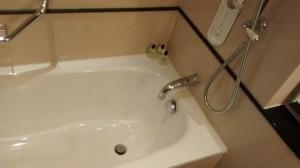 Intercon PL bathroom 2