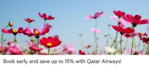 qatar promo code