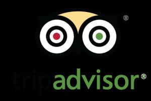 airline miles tripadvisor