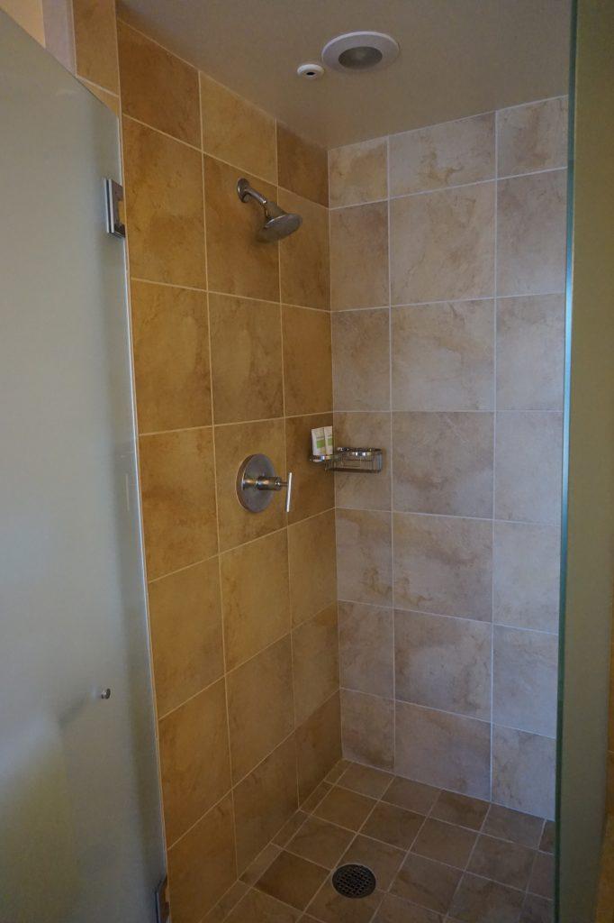 Beverly HIlton Shower